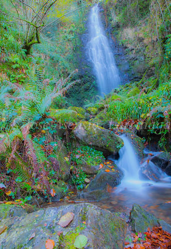 Parque Natural de Gorbeia #DePaseoConLarri #Flickr      -2819