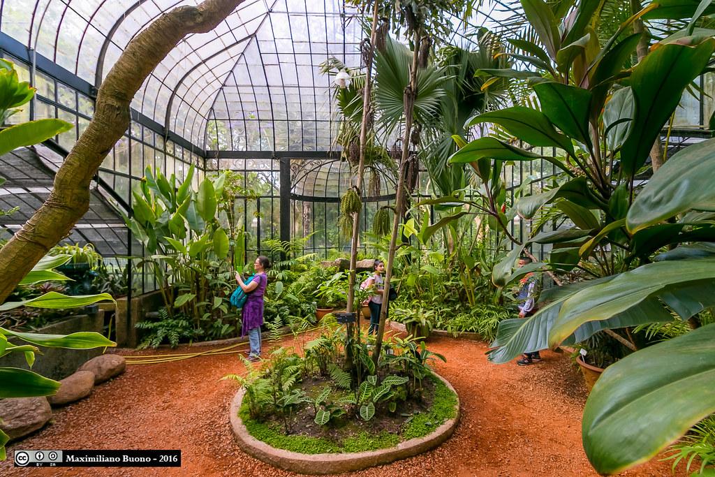 Invernadero del Jardín Botánico, Buenos Aires / Greenhouse… | Flickr
