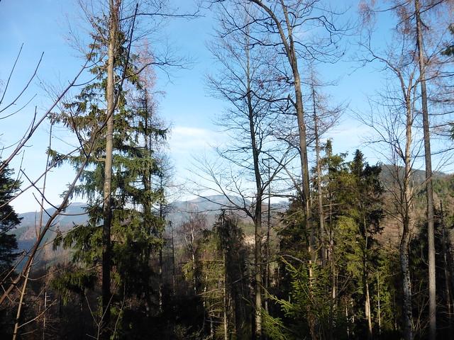 Schöne Aussichten - auf dem Weg nach Mariazell