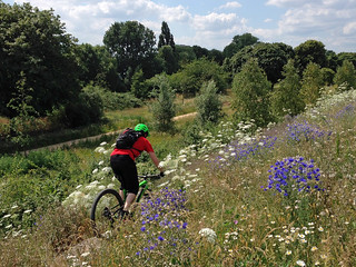 Mountain Bike Trail - Hackney Marshes | by diamond geezer