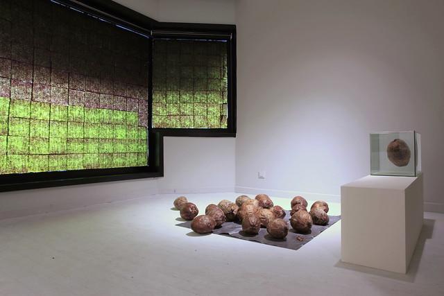 Installation View_7_Dunja Herzog_ Markus Hoffmann