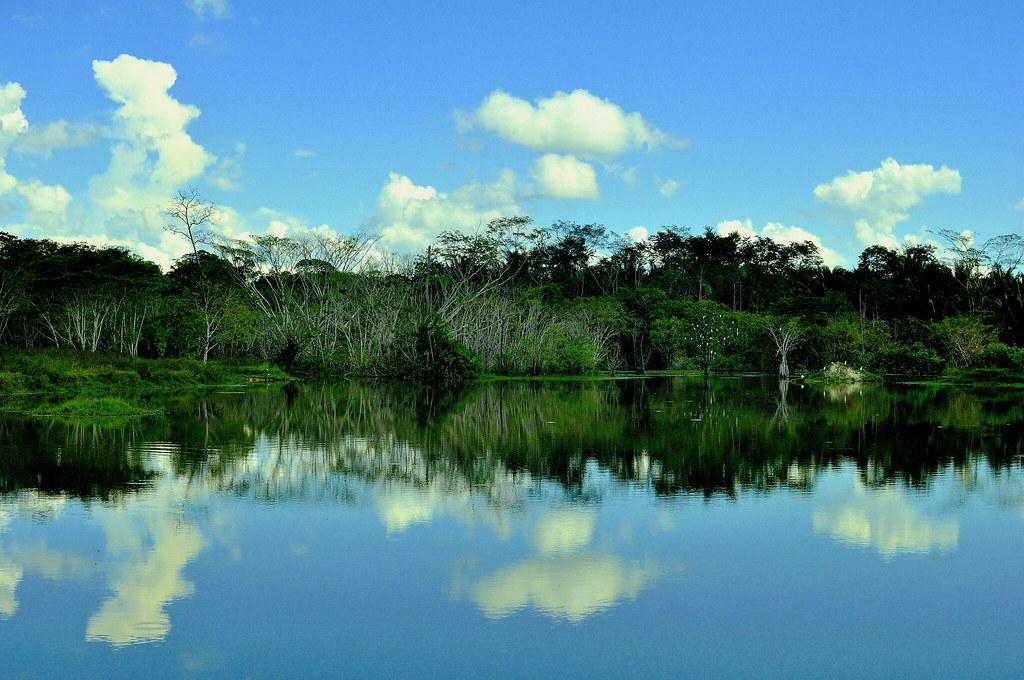 Cotriguaçu Mato Grosso fonte: c1.staticflickr.com