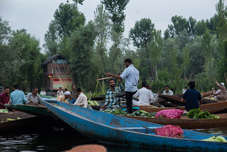DalLakeSrinagar_050 | by SaurabhChatterjee