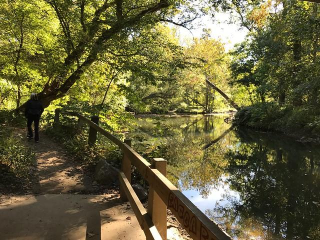 Hiking in Rock Creek
