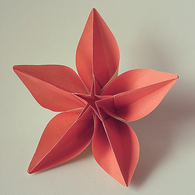 Carambola flower model by carmen sprung origami flower flickr carambola flower model by carmen sprung origami flower nature by luca de mightylinksfo