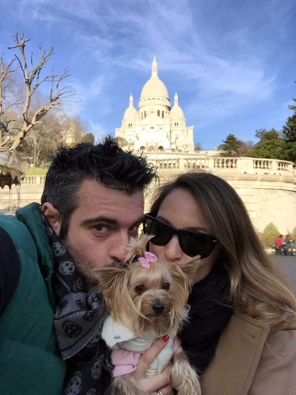 Cómo viajar con perros y mascotas mascotas - 30639349840 9ff253dcdc o - Cómo viajar con perros y mascotas