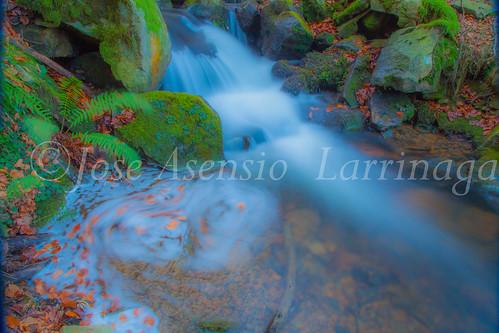 Parque Natural de Gorbeia   #DePaseoConLarri #Flickr      -2763