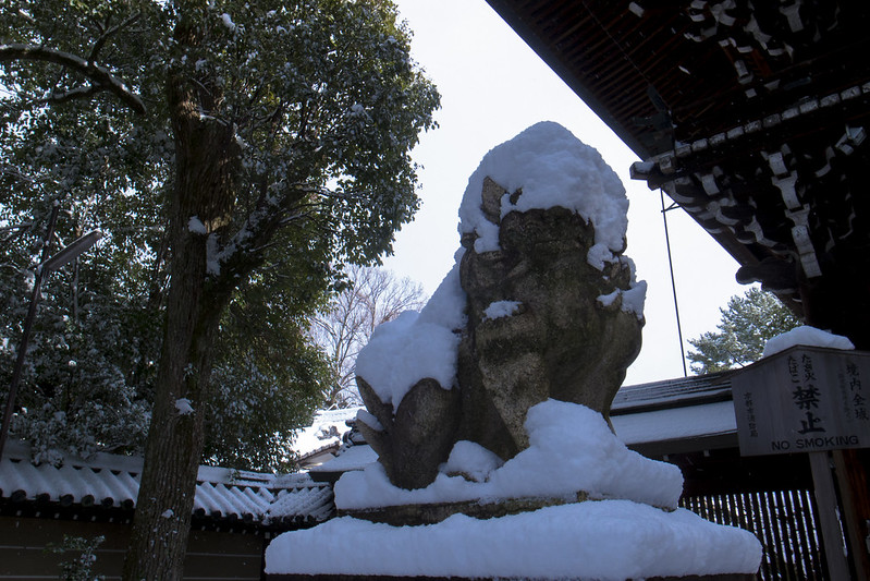 京都雪景色-20170115-1