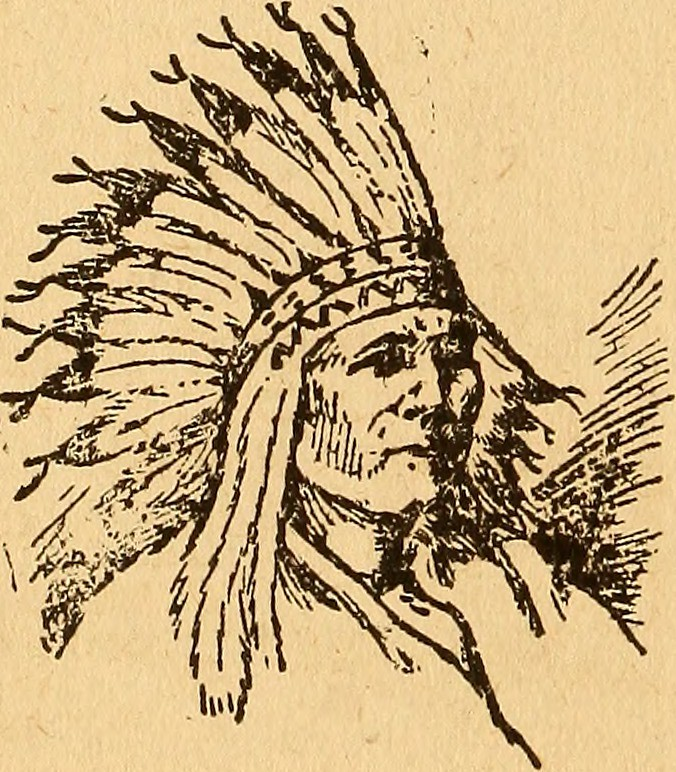 """Tribal Corse image from page 13 of """"the romance of a western boy; the s… 