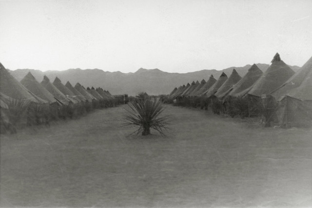 Tents at Camp Ibis, Desert Training Center Charles C. Dike, 607th Tank Destroyer Battalion