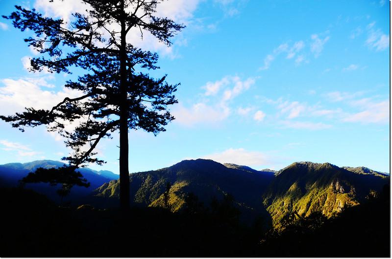 巨木區步道山景 2