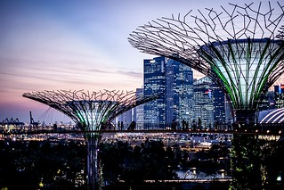 Singapore Trip 2014 | by Abstract Gourmet
