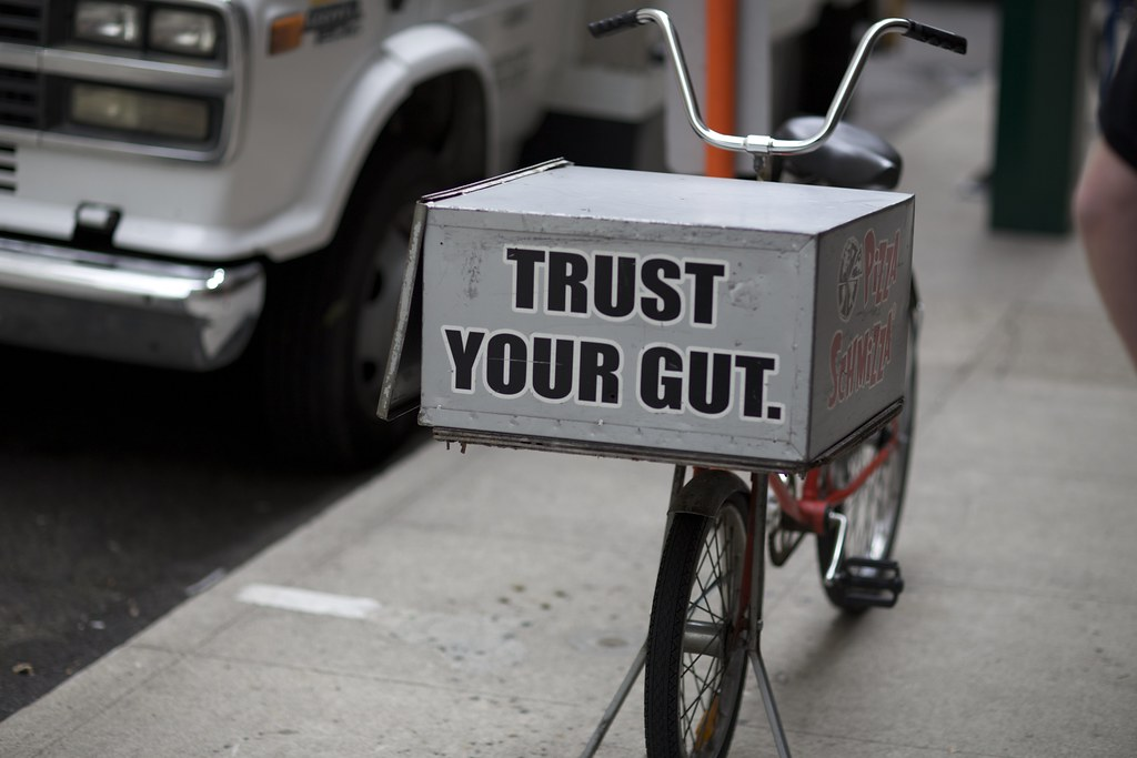 Image result for trust your gut