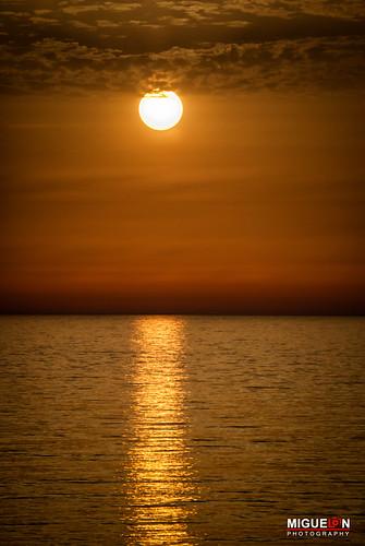 Oro l quido liquid gold playa de la barrosa c diz flickr - Muebles miguel angel cadiz ...