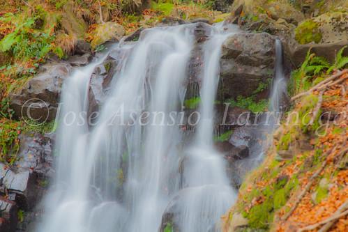 Parque natural de Gorbeia #DePaseoConLarri #Flickr      -2037