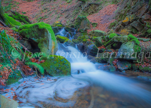 Parque Natural de Gorbeia   #DePaseoConLarri #Flickr      -2765