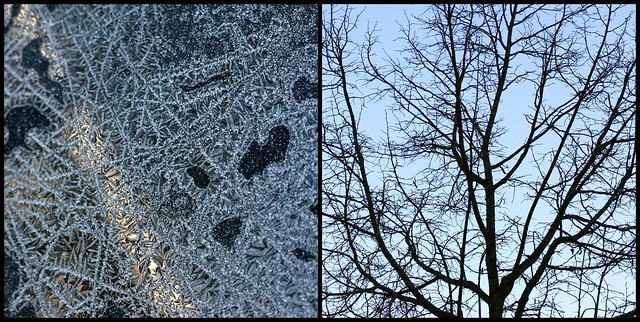 Patterns of winter