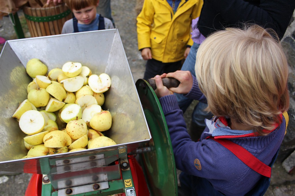 child using an apple scratter permaculture apple day plea flickr