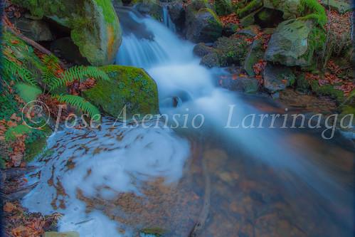 Parque Natural de Gorbeia   #DePaseoConLarri #Flickr      -2760