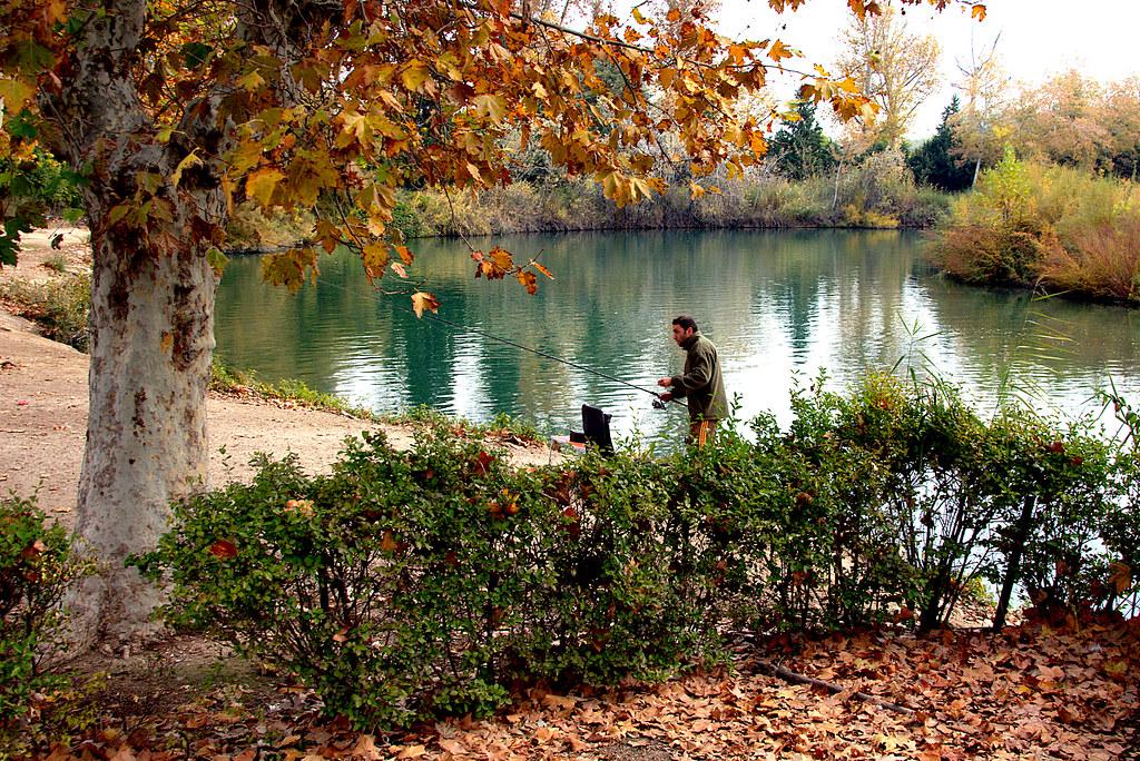 pescador en otoño en las riberas del Tajo