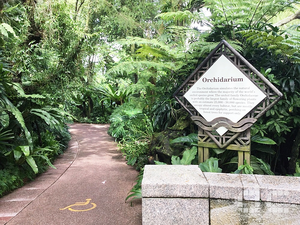 botanic gardens, places of interest, singapore, singapore botanic gardens, unesco,  where to go in singapore, national orchid garden,orchidarium