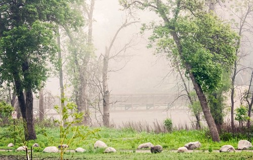 Foggy Lindenwood Park | by Fargo-Moorhead CVB