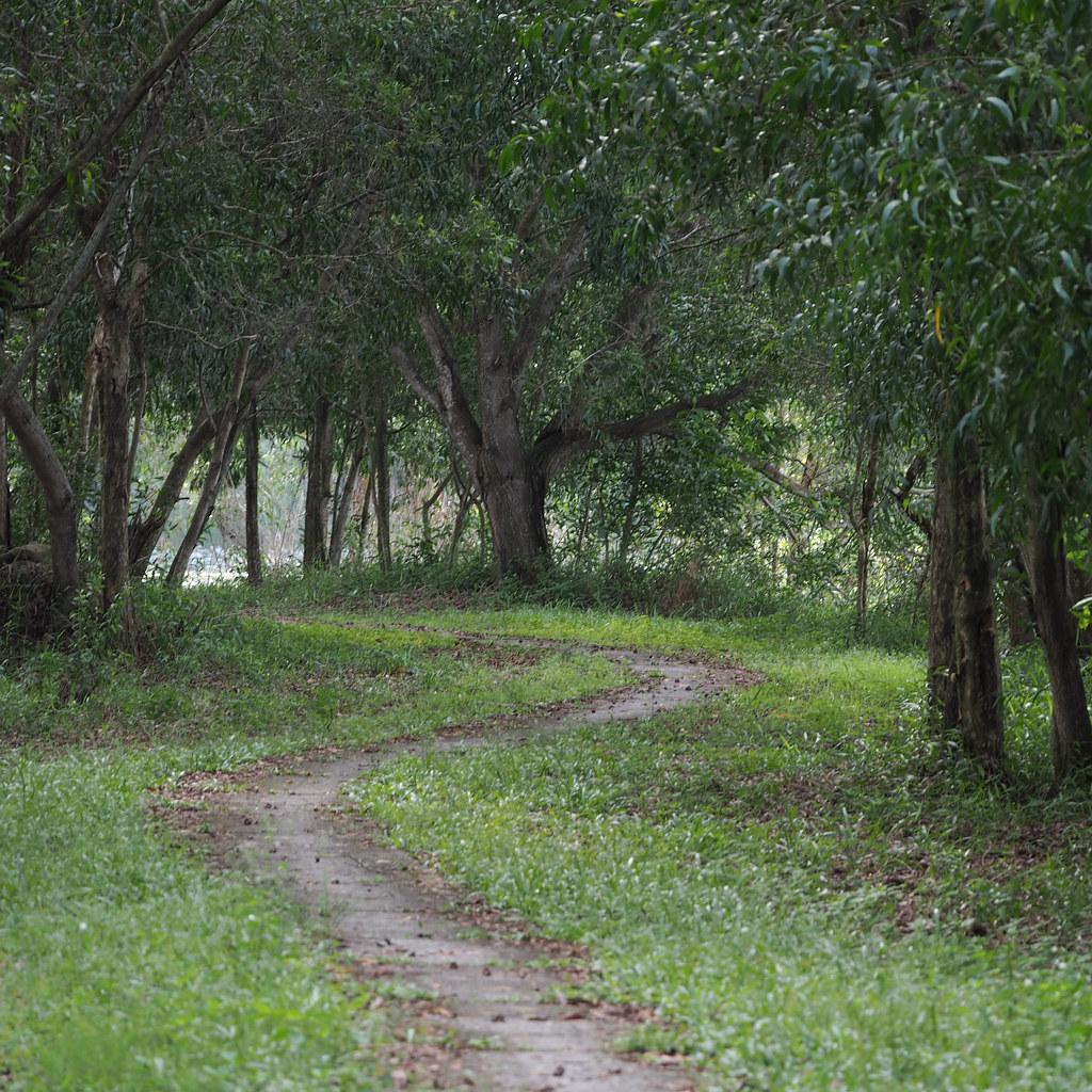 Dengkil Payah Indah Wet Lands