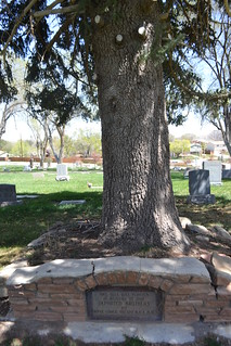 AF & AM memorial tree | by judylcrook