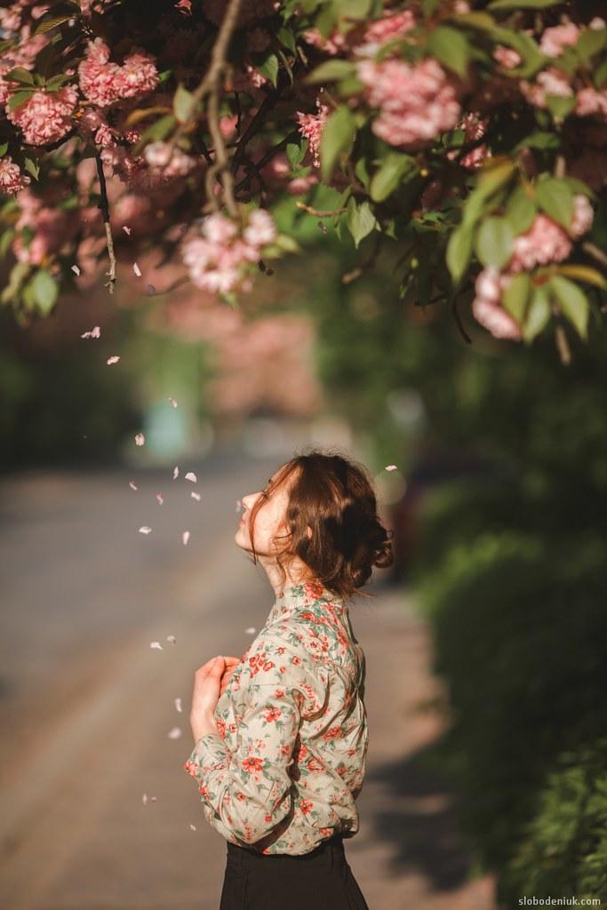 Girl Under Sakura Tree My Website Slobodeniuk For Lic Flickr