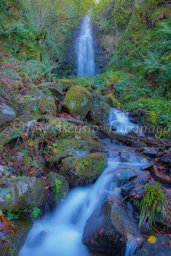 Parque Natural de Gorbeia #DePaseoConLarri #Flickr      -2824