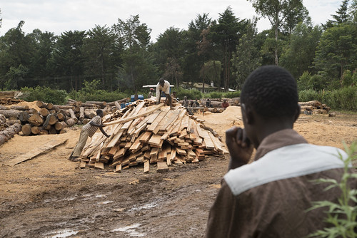 Workers Stack Logs | by World Bank Photo Collection