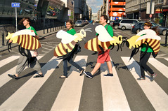 Save The Bees w Warszawie