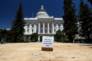 Sacramento Capitol During The Drought | by Kevin Cortopassi