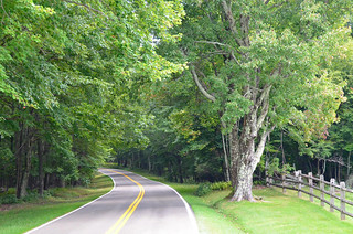 Grayson Highlands GH road in | by vastateparksstaff