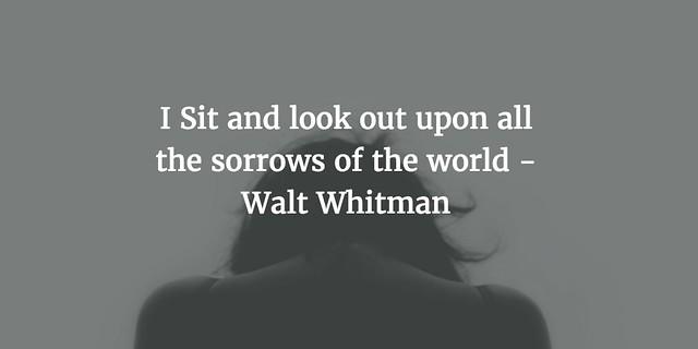 I Sit ... whitmanwednesday