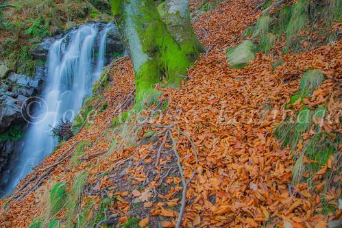 Parque natural de Gorbeia #DePaseoConLarri #Flickr      -2038