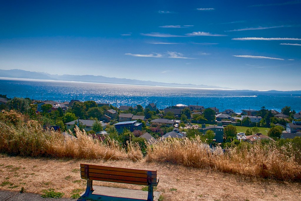 Bench with a View on Oak Bay Marina