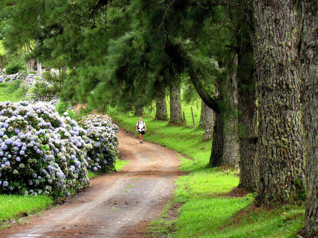 Circuito Vale Europeu : Caminhada no circuito do vale europeu santa catarina bu flickr