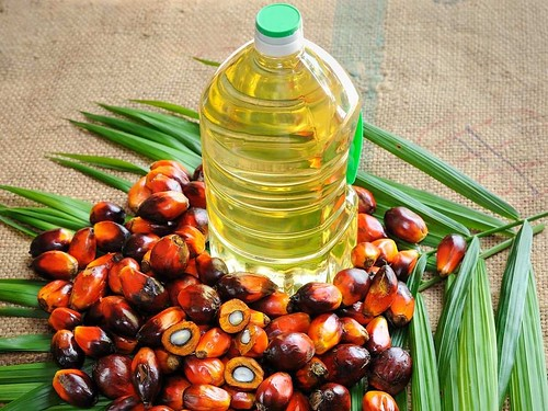 palmoil | by lifeonplates
