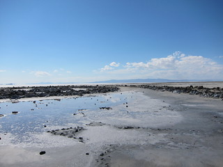 Spiral Jetty | by moriah.