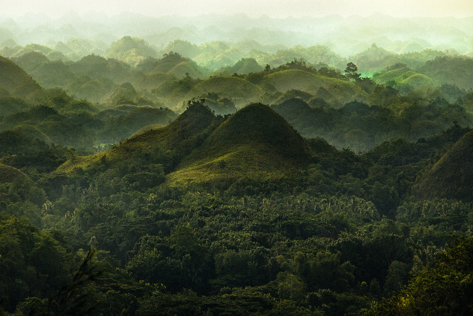 Chocolate Hills | by Reuben Wu