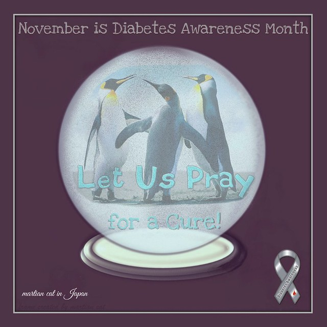 November is Diabetes Awareness Month ~ Let Us Pray for a Cure!
