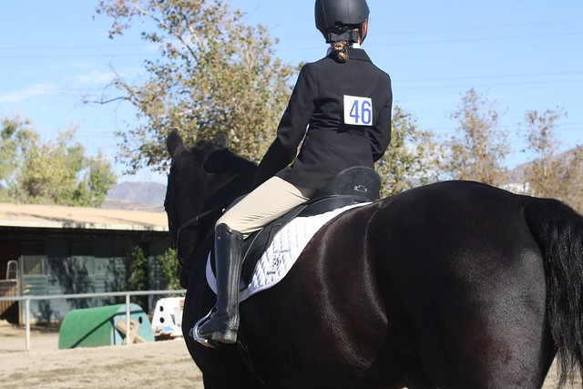 Pacific Dressage 10/16
