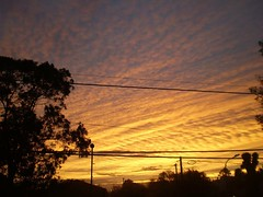 Argentine Sky from Surface