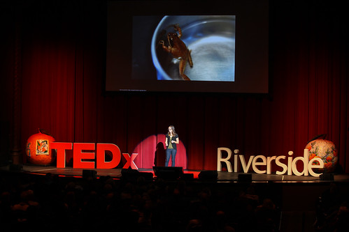 Jennifer O'Farrell at TEDxRiverside | by Mike's Birds