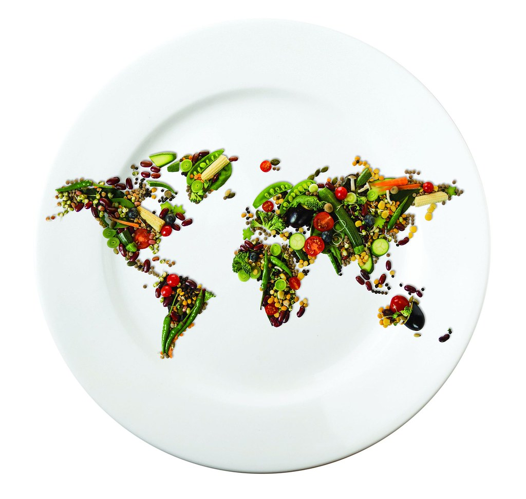 Plate with food map 2 plate with world map made of vegetab flickr plate with food map 2 by caritas internationalis gumiabroncs Choice Image