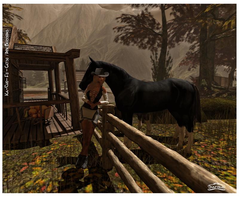 141 - Dark Horse