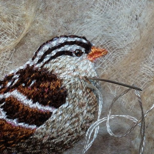 Little Sparrow, detail | by Kirsten Chursinoff
