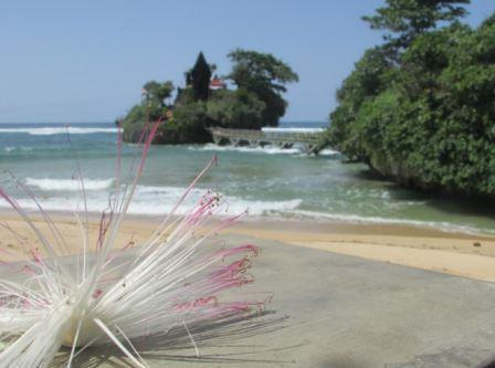 Pesona Pantai Balekambang | Wisata Religi Balai Kambang Malang