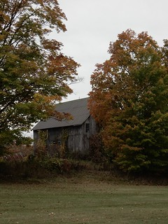 Barn in Autumn | by susanvg
